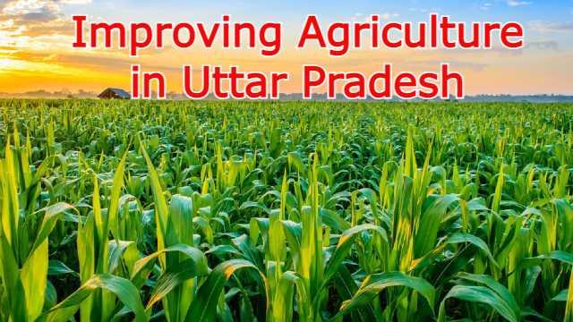 Improving Agriculture in Uttar Pradesh
